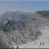 草津白根山(本白根山)では、火山活動がやや高まった状態!当面は1月23日と同様な噴火が発生する可能性があり!