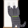 猫の困った爪とぎを解決!爪とぎを教えるポイント3つとさせない対策