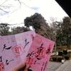 ひな祭り限定500体ピンク紙の御朱印 京都・勝林寺