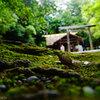 毎日一枚。「雨の時でも。」おすすめ:☆☆☆☆☆ ~写真で届ける伊勢志摩観光~