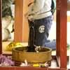 日本の心の自由の旅 日本に入ってきた仏教
