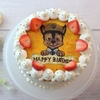久しぶりのブログ記事。パータデコールのキャラクターケーキ&子供たちの成長。