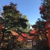 穴八幡宮へ行って参りました。