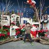 枚方パークのクリスマスイベントでおすすめポイント&残念なポイント