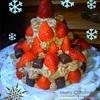実家でクリスマスパーティ♪とプレゼントと冬のベランダガーデニング♪