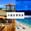 【総額いくら?】夏休み沖縄2泊4日の旅費精算