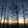 バリエーションルート2座を登る(赤倉山、大平山)