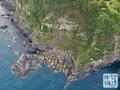 【461】池ノ島の大甌穴(兵庫県新温泉)