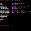 Gentoo LinuxのGitHubアカウント乗っ取り原因は「パスワード推測」