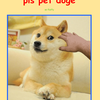 PET THE DOGeeee!!
