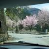 2017年4月20日の三峯神社ドライブ