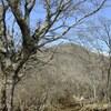 春の訪れ(塔ノ岳・鍋割山)