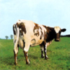 Pink Floyd - Atom Heart Mother:原子心母 -
