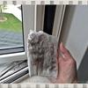 あみ戸の「外側」の掃除方法☆2階の窓のあみ戸でも簡単に掃除できます♪