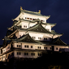 写真で綴る、名古屋城夏祭り