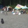秋川渓谷へ犬連れでキャンプしてきた/神戸園(かのとえん)