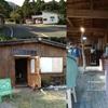 屋久島ボンボンポイ第18+2回 ランド線にtama cafeプレオープン