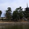 2020年1月奈良ひとり旅3日目〜元興寺から興福寺周辺をゆるゆるぶらり