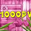 【ブログ初心者】アクセス数1000PV達成しました☆
