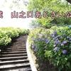 山之口あじさい公園(宮崎・都城)の開花と見頃情報!2018都城人気観光スポットは?