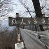 第12回仙人ヶ岳トレイルランレースふりかえり【その2】レース編
