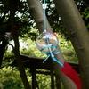 鈴の宮蜂田神社が風鈴祭り!たくさんの風鈴があるよ~!【堺市中区】(7月1日~8月31日まで)