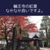 仙台で紅葉の綺麗なお寺といえばコチラ。【輪王寺】の紅葉を紹介します。