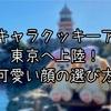 【インパ日記】ダッフィー&フレンズ新キャラ・クッキーアンお迎え!かわいい子の選び方
