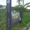 青葉城址へ散歩 国際センターから長沼へ
