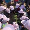小学校で記念植樹