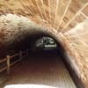 もうひとつのラピュタ、深山砲台跡と海軍秘密基地。ドタバタ探検記!! 和歌山市加太【戦争遺跡】…Part1