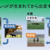 育成馬ブログ 生産編②(その1)