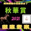 秋華賞2021徹底考察!~阪神開催で浮上する馬とソダシの取捨~