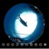 イルカ を 下から見上げる #360pics
