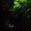 いろいろ疲れたら、夜を歩こう。