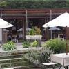 【北海道グルメ】憧れの緑のカフェ🍃 Meon農苑・ミオンガーデンカフェ