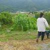 2012ジャガイモ収穫①
