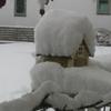 大雪に🌁⛄🌁😭