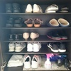 【隙間があると気持ち良い!】靴箱を掃除しました&靴の数。