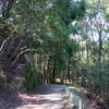 平野谷から鍋蓋山へのハイキング(その1)平野谷~二本松林道