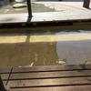 【青春18切符】熱海駅前の足湯に浸かり、ポケモンGOをやる