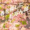 【春を探しに】近所の公園で花の撮影!