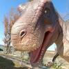 東京ドイツ村で子供と恐竜体験【ジュラジャーマンライド】