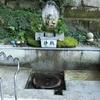 上日寺の霊水とゲンノショウコ薬草茶~氷見の古刹~