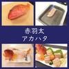 旨い魚、アカハタ!料理は姿造り(刺身/湯引き/炙り)とアラ煮付け!