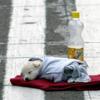 ノルウェー人女性が狂犬病で死亡!旅先のフィリピンで助けた子犬にかまれる