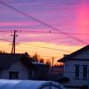 浜ちゃん日記 わが家から見た天空の魔術・太陽柱
