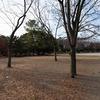 清澄公園の広場