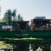 注:シュリーナガルの水上ハウスに泊まると酷い目に合います!