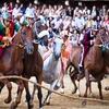 8月16日の国民的一大イベント。中世の裸馬レース「シエナのパリオ」(Palio di Siena) !!! イタリア